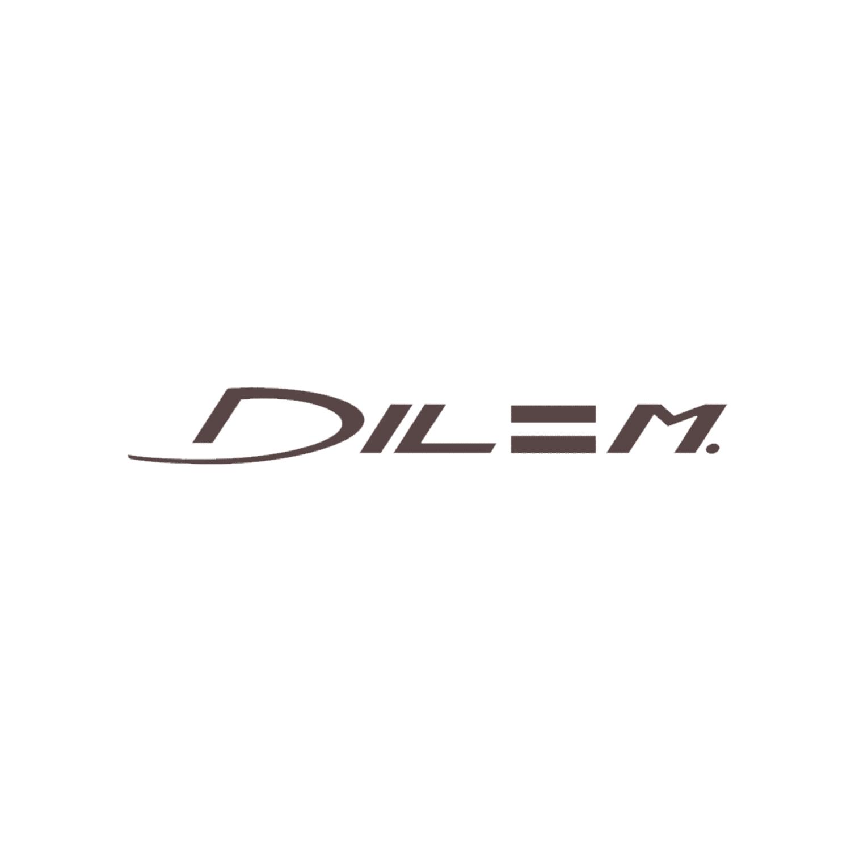 Logo Dilem